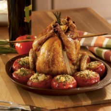 vertical-chicken-roaster-photo