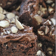 malt-fudge-brownies