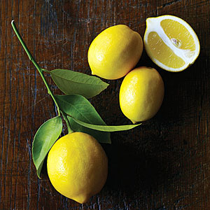 meyer-lemon-m