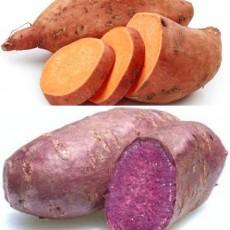 Yams or Sweet Potatoes?